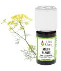 Dill plant essential oil (organic)