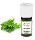 Coriander essential oil (organic)