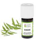 Vervain essential oil (organic)
