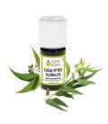 huile essentielle eucalyptus globulus (bio)
