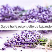 Quelle huile essentielle de Lavande choisir ?